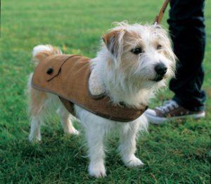 dogs jacket, ραψτε ρούχα για τον σκύλο σας μονοι σας